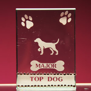 Top Dog Trophy